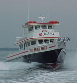 New Jersey Fishing Reports
