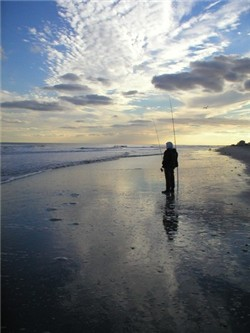 New jersey fishing reports for Brigantine fishing report
